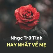 Tải bài hát Mp3 Nhạc Trữ Tình Hay Nhất Về Mẹ trực tuyến
