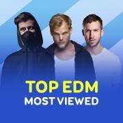 Tải bài hát online Top EDM Được Nghe Nhiều Nhất Mọi Thời Đại Mp3 hot