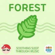 Download nhạc online Forest - Soothing Sleep Through Music nhanh nhất