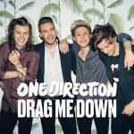 Tải bài hát online Những Bài Hát Hay Nhất Của One Direction chất lượng cao