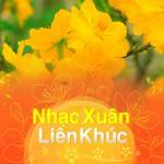 Download nhạc Mp3 Nhạc Xuân Liên Khúc hot