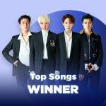 Nghe nhạc Mp3 Những Bài Hát Hay Nhất Của WINNER hay nhất