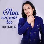 Tải nhạc online Hoa Cài Mái Tóc nhanh nhất
