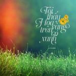 Nghe nhạc online Tôi Thấy Hoa Vàng Trên Cỏ Xanh (Single) mới nhất
