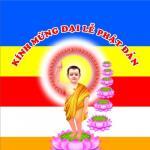 Download nhạc mới Hát Mừng Phật Đản Sanh hay online