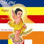 Tải nhạc Mừng Ngày Phật Đản (Single) Mp3 mới