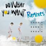 Tải nhạc online Do What You Want (Remixes) về điện thoại