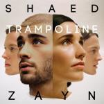 Nghe nhạc hay Trampoline (Single) Mp3 miễn phí