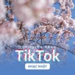 Nghe nhạc hay Top Thịnh Hành TikTok (Nhạc Nhật) Mp3 trực tuyến