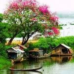 Tải bài hát online Dân Ca Bắc - Trung - Nam Mp3 hot