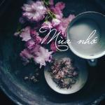 Download nhạc Mp3 Mùa Nhớ mới online