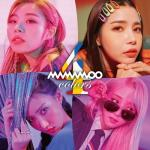 Tải bài hát online 4colors hot