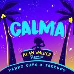 Download nhạc hot Calma (Alan Walker Remix) (Single) về điện thoại