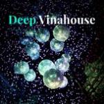 Tải bài hát online Deep Vinahouse mới nhất
