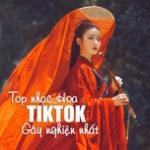 Tải bài hát online Top Nhạc TikTok Hoa Ngữ Gây Nghiện Nhất Mp3 hot