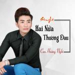 Download nhạc mới Hai Nửa Thương Đau (Single) Mp3 trực tuyến