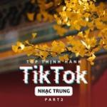 Nghe nhạc Top Thịnh Hành TikTok (Nhạc Trung) - Part 2 Mp3 online