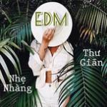 Tải bài hát hay EDM Nhẹ Nhàng Thư Giãn Mp3 online