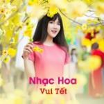 Tải bài hát Nhạc Hoa Vui Tết hay online