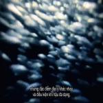 Tải nhạc mới Ẩm Thực Trung Hoa - Tập 1 (Vietsub) hay online