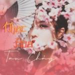 Tải bài hát Nhạc Hoa Tan Chảy Mp3 trực tuyến