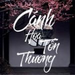 Download nhạc Cánh Hoa Tổn Thương - Ballad Việt Nhẹ Nhàng trực tuyến