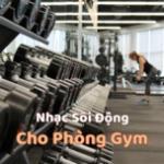 Download nhạc Mp3 Nhạc Sôi Động Cho Phòng Gym miễn phí