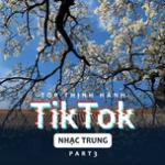 Tải bài hát mới Top Thịnh Hành TikTok (Nhạc Trung) - Part 3 Mp3 online