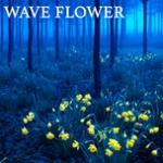 Download nhạc hay Wave Flower (Single) hot