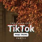 Tải nhạc mới Top Thịnh Hành TikTok (Nhạc Trung) - Part 11 về điện thoại