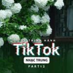 Download nhạc mới Top Thịnh Hành TikTok (Nhạc Trung) - Part 12 hay nhất