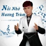 Nghe nhạc Nỗi Nhớ Hương Tràm (Single)