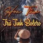 Nghe nhạc hot Hòa Tấu Trữ Tình Bolero (Phần 4) hay online