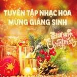 Tải bài hát Tuyển Tập Nhạc Hoa Mừng Giáng Sinh - 圣诞快乐 về điện thoại