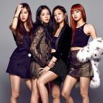Tải nhạc Mp3 Mashup: BomBayAh - Gashina - Go Go - Mic Drop... nhanh nhất