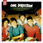 Download nhạc hay What Makes You Beautiful Mp3