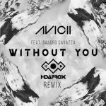 Tải nhạc hay Without You (Hoaprox Remix) trực tuyến