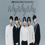 Download nhạc hay Why Why Why Mp3 trực tuyến