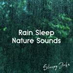 Tải nhạc hay Relaxing Rain Sounds, Pt. 05 hot