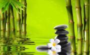 Tải nhạc hình Nhạc Nền Spa / Yoga / Thiền / Relax 2 mới online