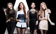 Video nhạc Nhật Ký BlackPink (Tập 5 - Vietsub) trực tuyến