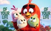 Tải nhạc mới Best Day (Angry Birds 2 Remix) (Lyric Video) online
