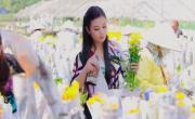 Video nhạc Hỏi Nàng Xuân mới online