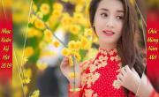 Video nhạc Liên Khúc Như Hoa Mùa Xuân Cực Sôi Động hot nhất
